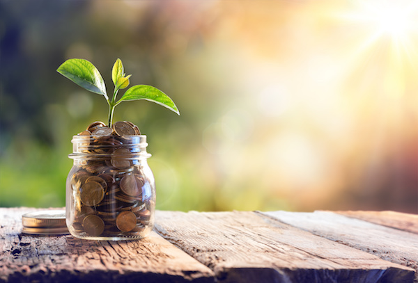 3 Basic Principals of Investing for Investment Beginners